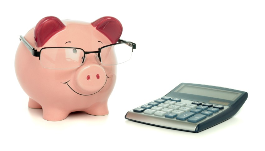 Pig with Calculator